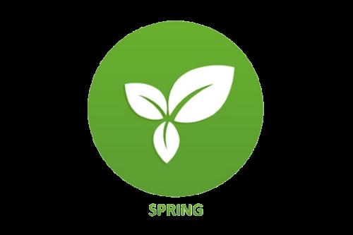 spring.png - 48.19 kB